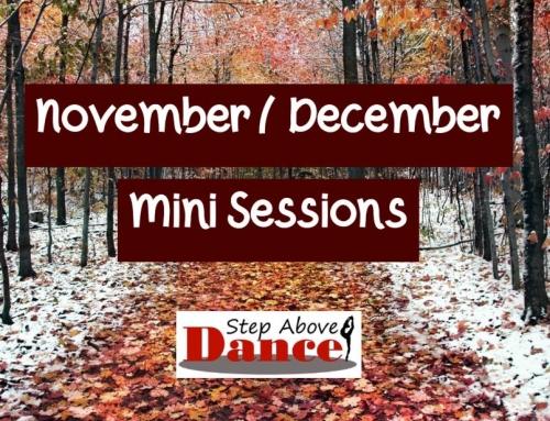 November/ December Mini Sessions